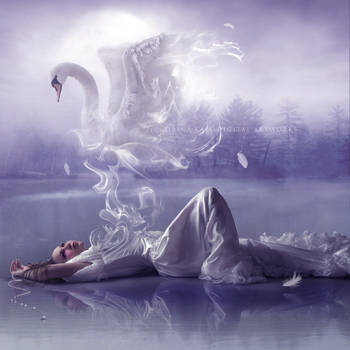 Swanheart by artorifreedom