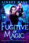 Book Cover - Fugitive of Magic