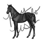 Thoroughbred Foal Grayscale Lineart