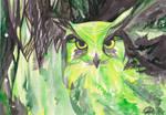 Enchanting Owl