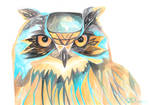 Wishful Owl
