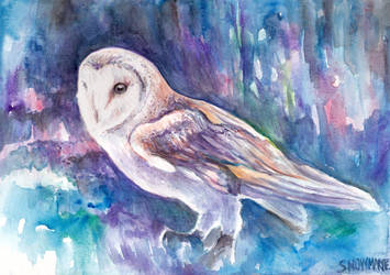 Snow Owl by snowmarite