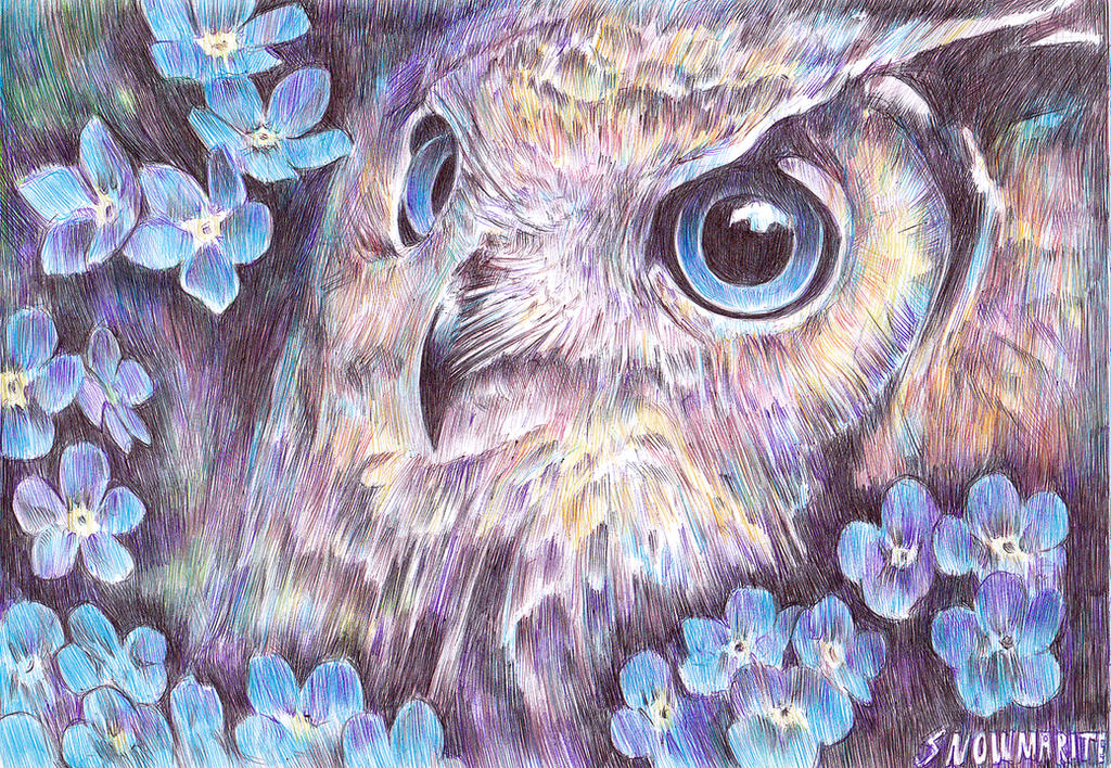 Night Owl by snowmarite