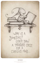 What is a bookshelf...