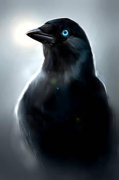Yes Sir I'm a Bird