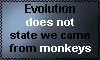 Evolution by Kotego