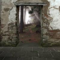 Premade Old Door by desideriasp-stock