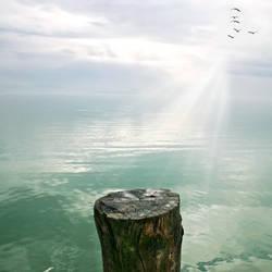 Premade Sea