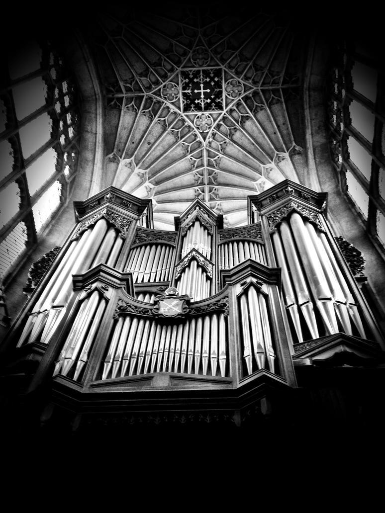 The Organ by Nihriyra