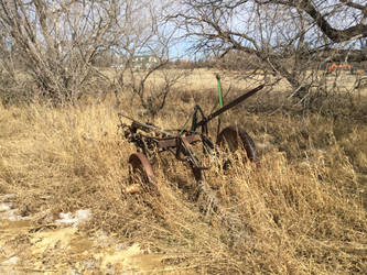 Old Plow in Spring by fdnbgonds