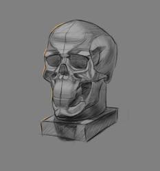 Skull by Nishant321go