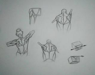 Simple Anatomy construction [Practice - 20] by Nishant321go