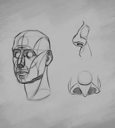 Facial structure [Practice 21] by Nishant321go