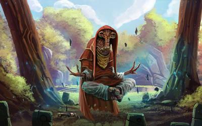 Padawan Tarren meditating on Tython
