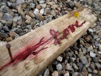 The Cross 1