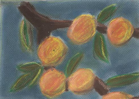 Oranges, Chalk Pastel