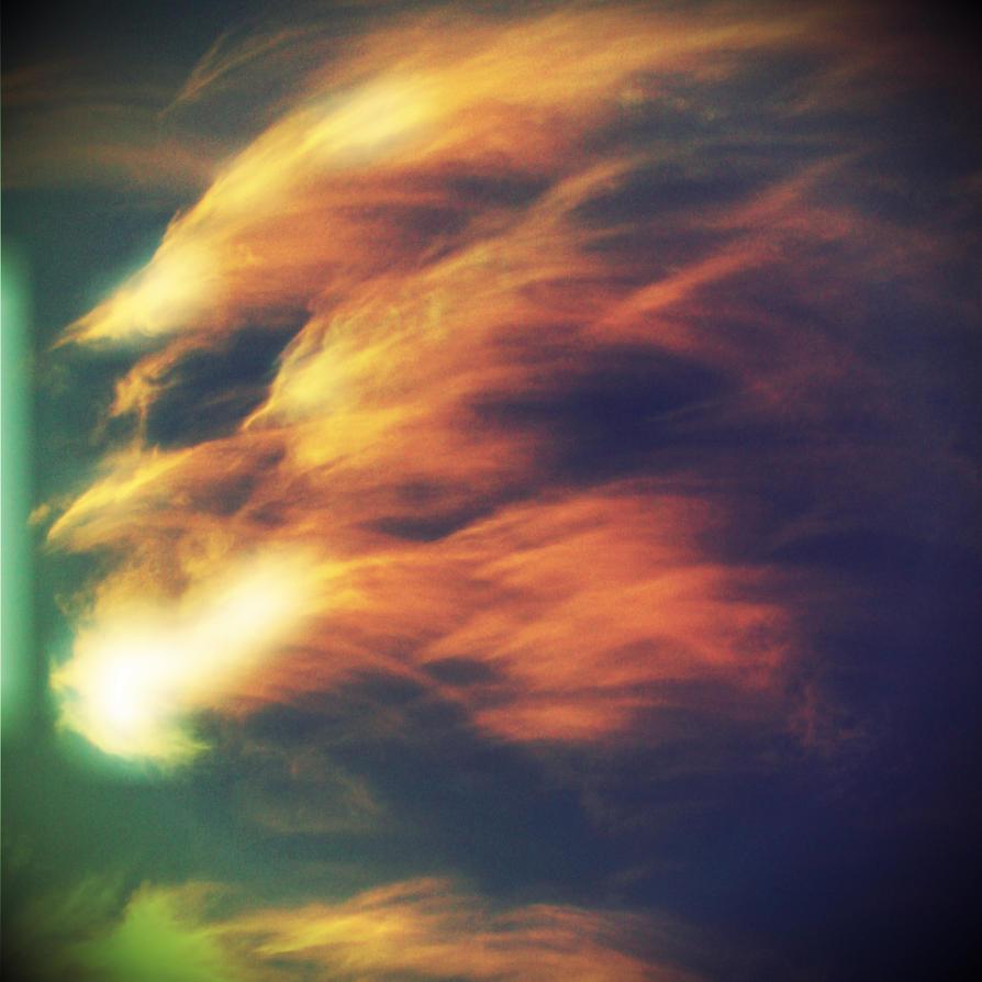 Phoenix by breezin-horizons