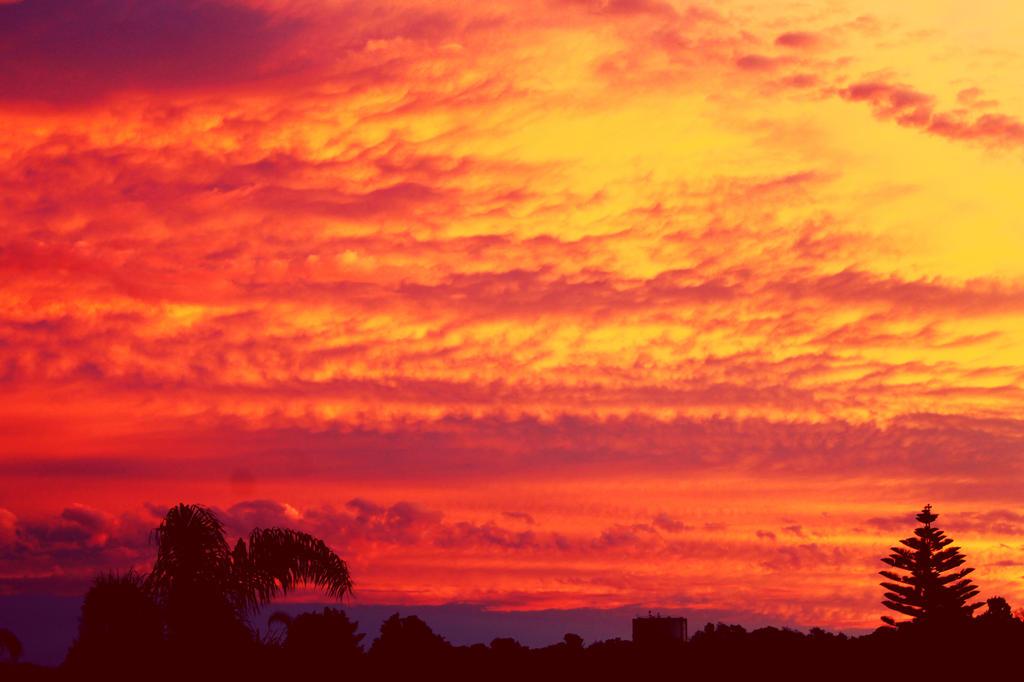 Burning Bright by breezin-horizons