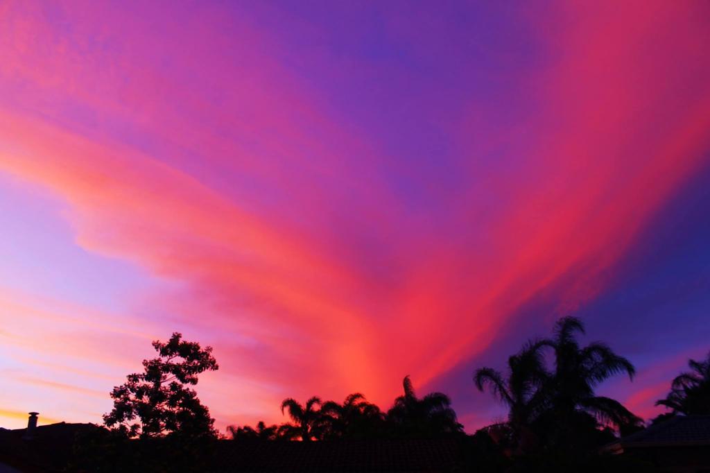 Violet Wind by breezin-horizons