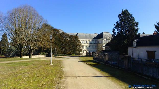 Chateau de Blois #3