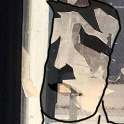 Window Face Project