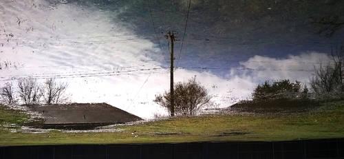 Reflection pana