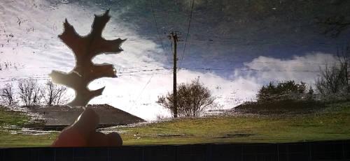 Reflection pana 2