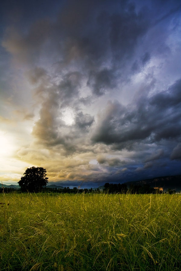 Rainy Days by ZeSly