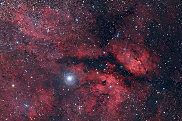 IC1318 - Sadr Region by ZeSly