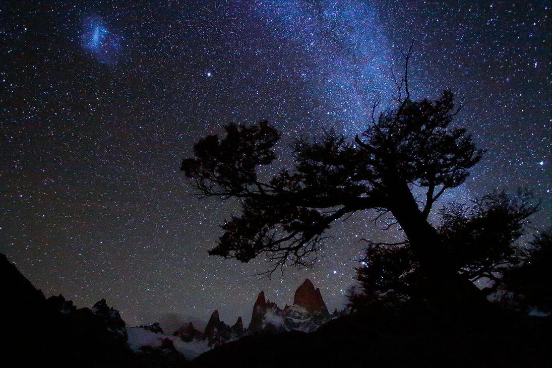 Sky Tree by ZeSly