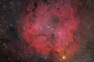IC 1396 and the Elephants Trunk Nebula