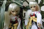 Sesshoumaru cosplay