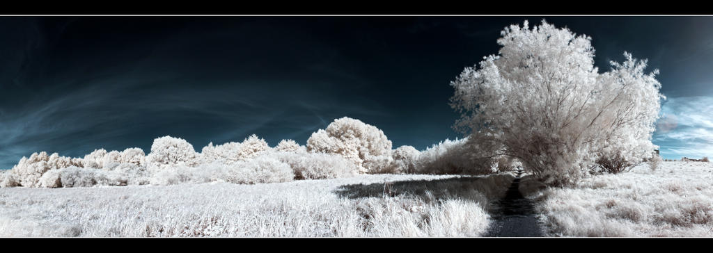 IR Panorama by Roman89
