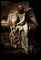 Angel by Roman89