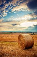 Harvest II by Roman89