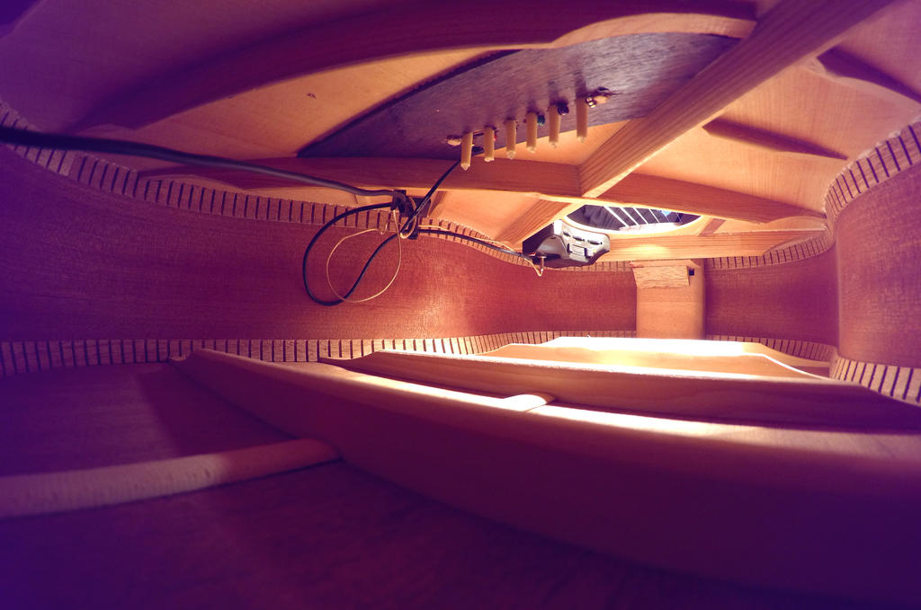 Inside of my guitar by Roman89