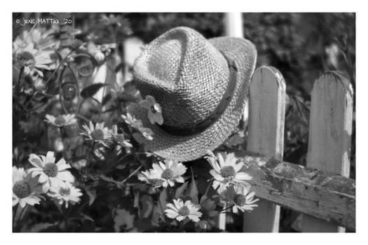 All Around My Hat