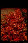 Autumn by daschristkind