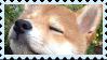 F2U Sheeb Stamp by JayTheMusical