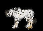 Dalmation Gal Custom