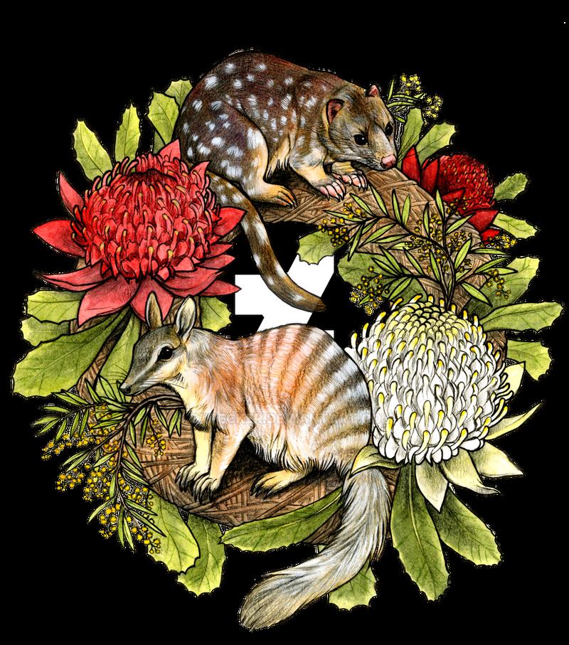 Australian Wreath by oxpecker