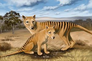 Thylacine in habitat by oxpecker