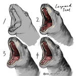 Leopard seal speedpaint process by oxpecker