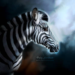 Moonlit Zebra by oxpecker