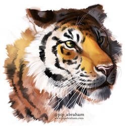 Tiger speedpaint by oxpecker