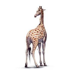 #Draw30Animals 10: Elegant - Giraffe