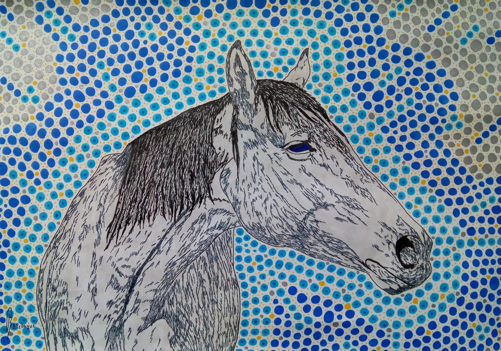 Kazakh Silver by bernardojr