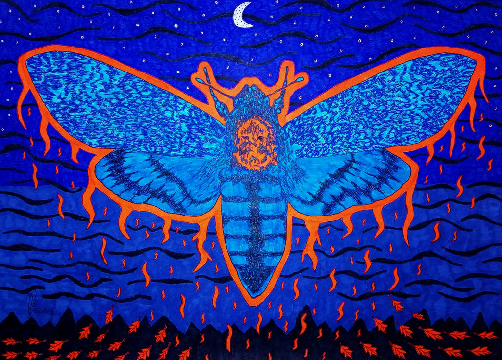 The Night is Free! by bernardojr