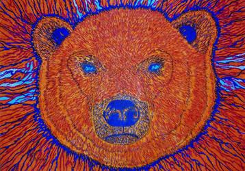 Oso Polar by bernardojr