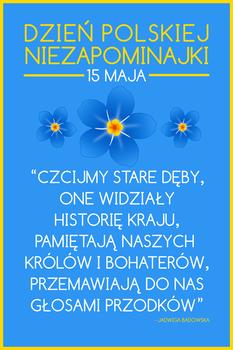 04 PLAKAT - Dzien Polskiej Niezapominajki v. 2